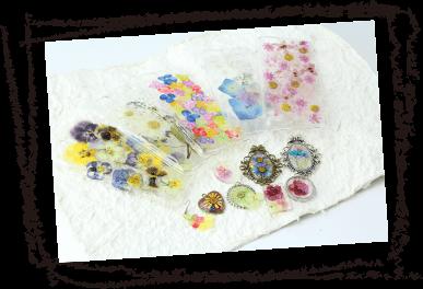 着色押し花などは、全て国産品です